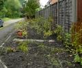 New Community Garden created!