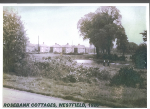 Rosebank Cottages c.1920