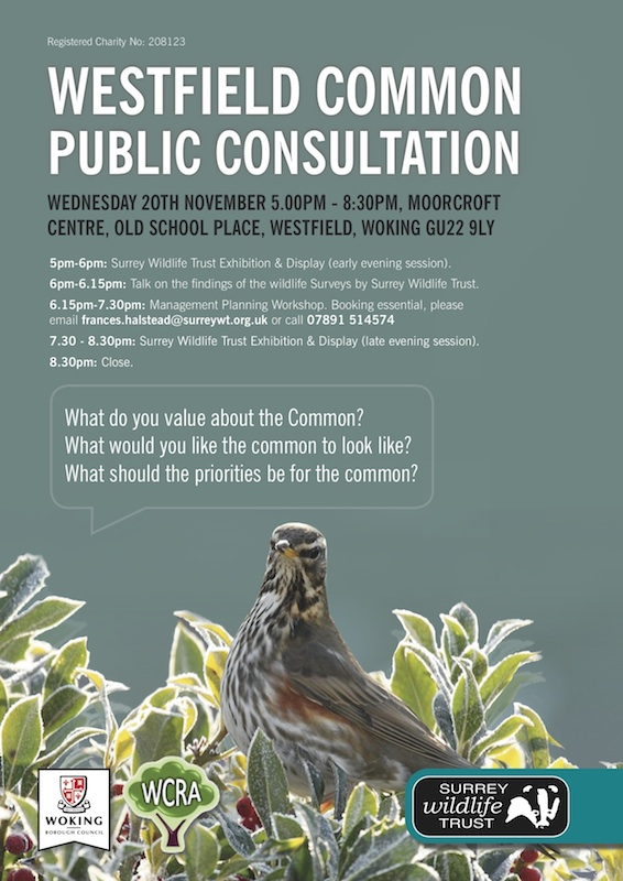 westfiled common consultation poster