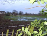 More Flooding on Proposed 'Moor Lane' development Site (17 Jan 2011)