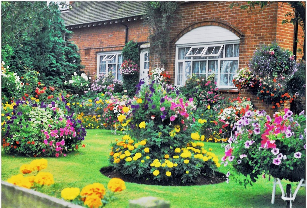 Woking front garden of the year wcra westfield for Best front gardens