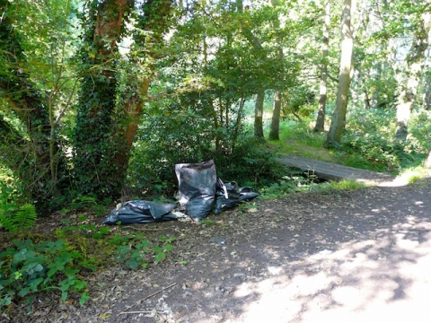 Flytipping by Moor Lane Pond