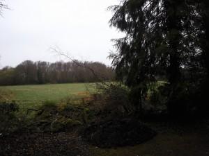 SW Field Moor Lane
