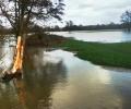 More scenes of flooding (09 Feb 2014)